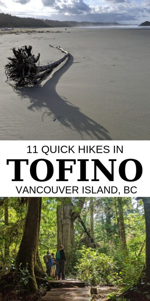Short on time but want to experience the magic of Vancouver Island's West Coast? Here are 11 fast and fun Tofino hikes which showcase this beautiful area. offtracktravel.ca