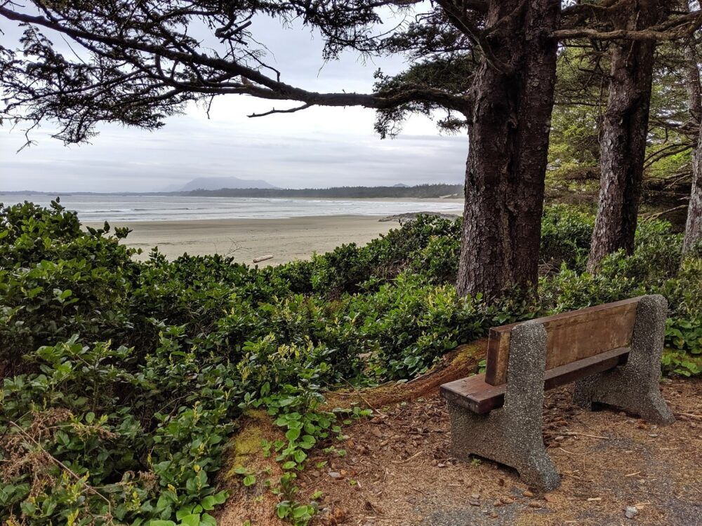 A bench in front of a coastal viewpoint, on the Nuu-chah-nulth trail, one of the best Tofino hikes
