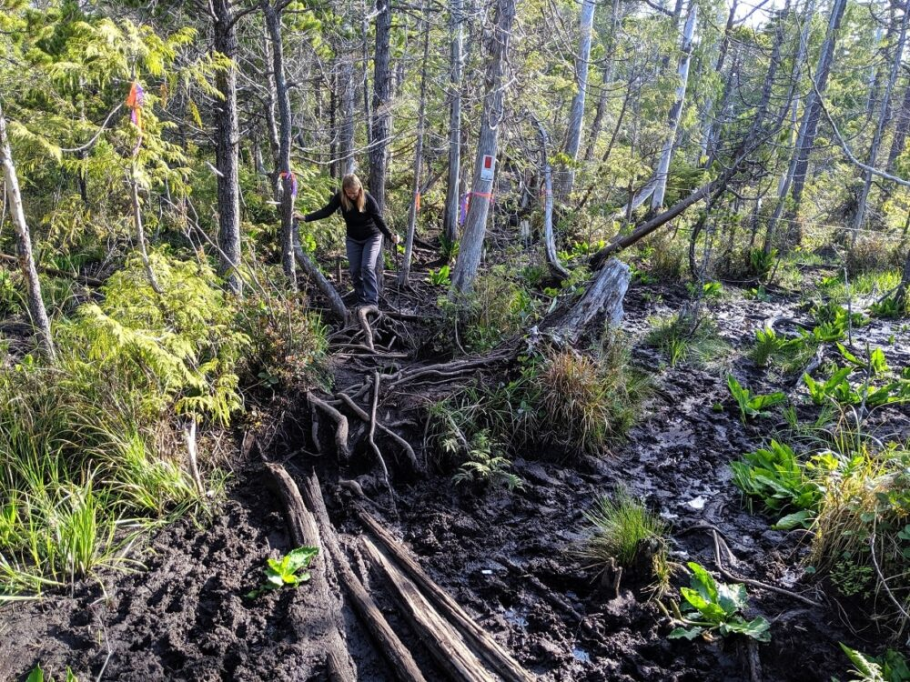 Gemma scaling the mud path to reach the Canso bomber crash site - this Tofino hike is the muddiest around