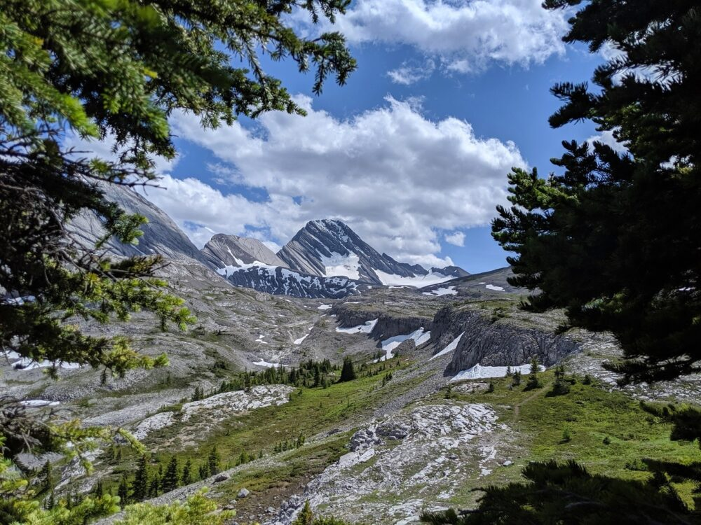 Peaks and alpine meadows, with spots of snow on the Burstall Pass trail