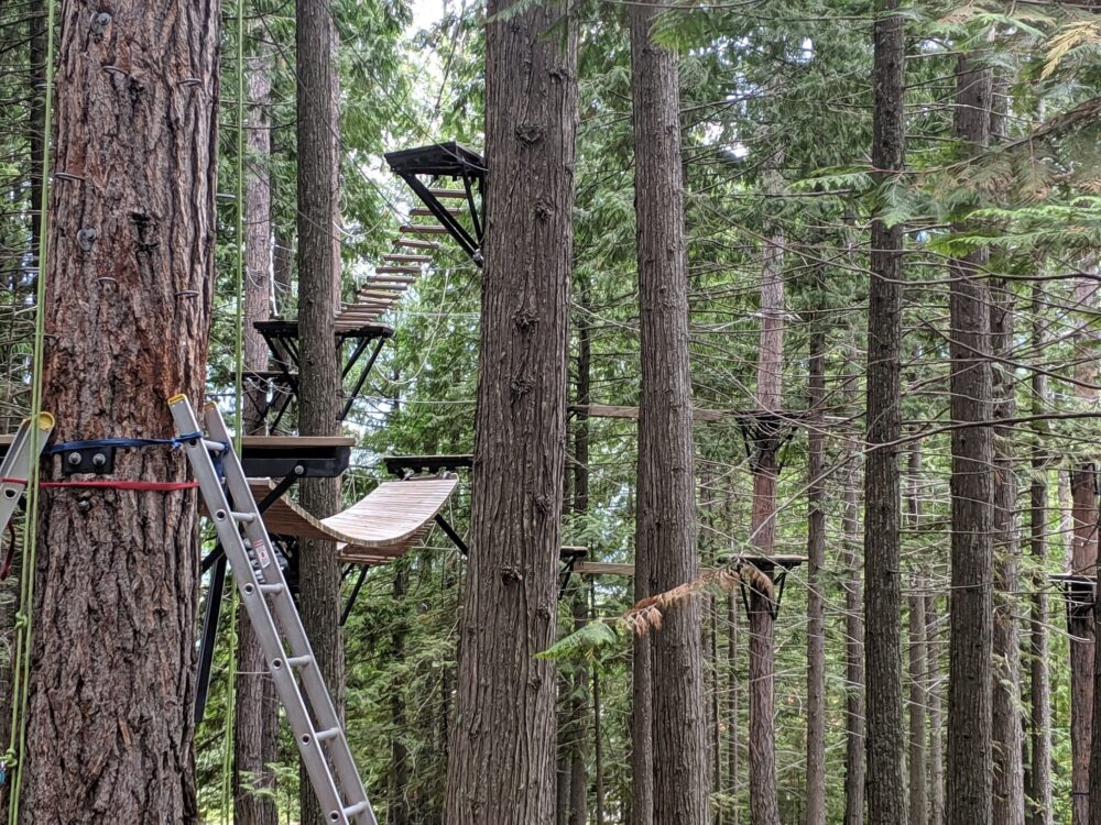 Trees with elevated, fixed obstacles - part of the Fernie Alpine Resort aerial experience