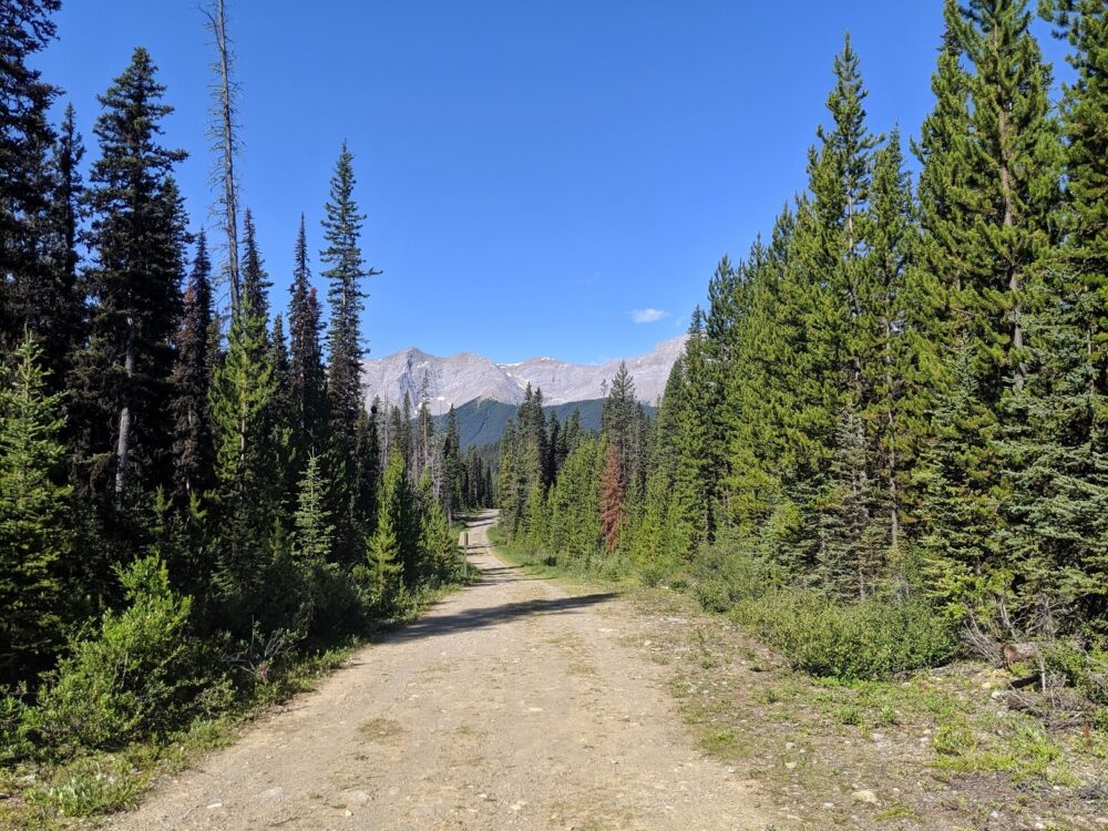 Wide, flat dirt path with mountain range in background - the Watridge Lake is an easy and rewarding Kananaskis Valley trail