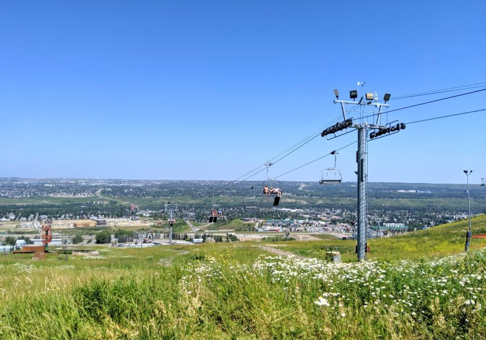 Chairlift with wildflowers in foreground at Calgary Olympic Park