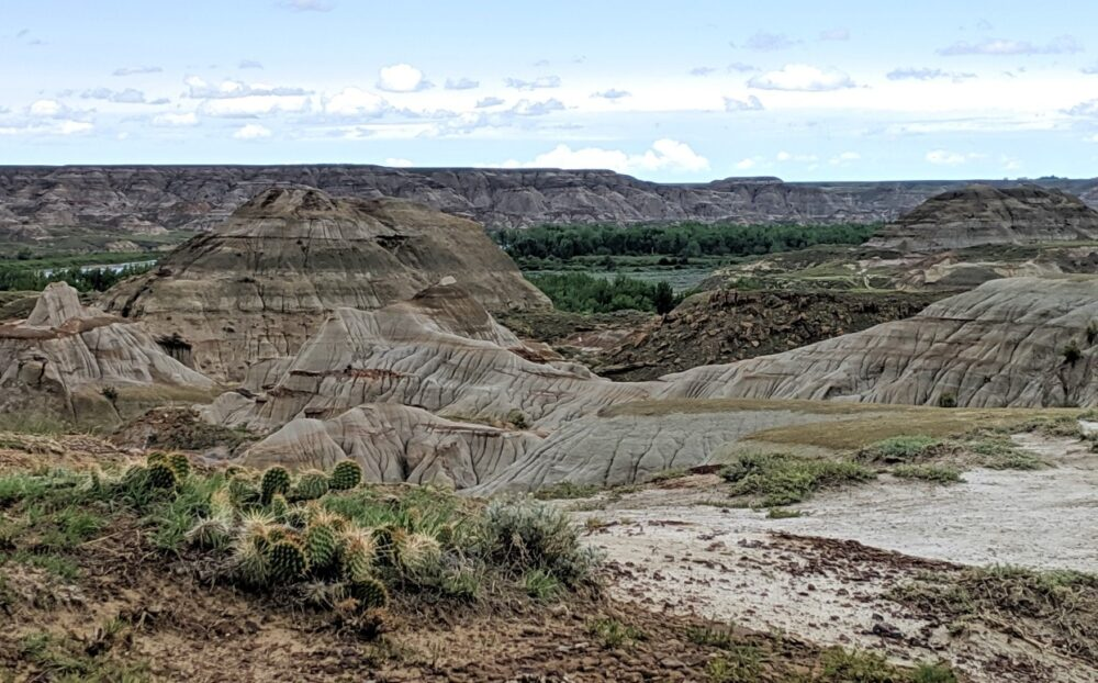Badlands scenery in Dinosaur Provincial Park - dry eroded landscape with cacti