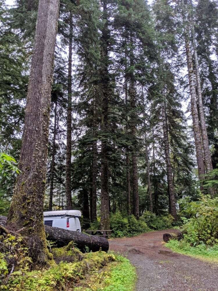 White van peeks out of out campsite, surrounded by tall trees at Nahwitti Lake