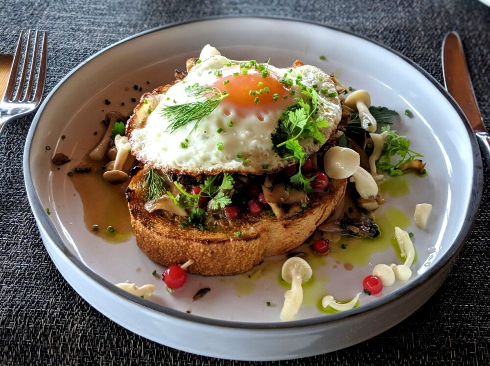 Large slice of toast topped with mushrooms and a fried egg, dotted with pink huckleberries