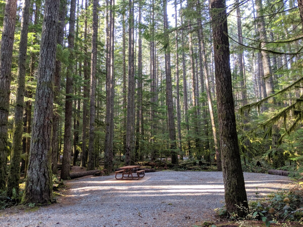 Looing into provincial park campground with picnic table set on cement square in gravel circle, surrounded by trees