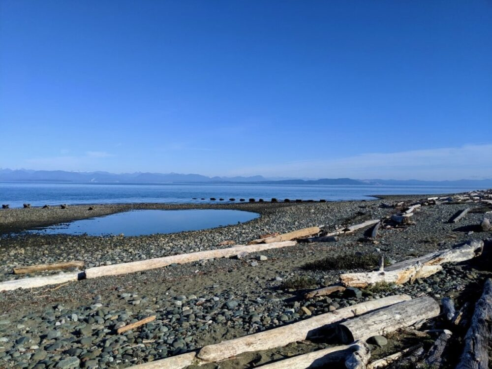 Rocky beach with driftwood looking towards calm ocean and mountains beyond