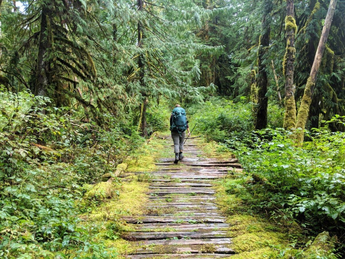 Gemma walking on corduroy plank road