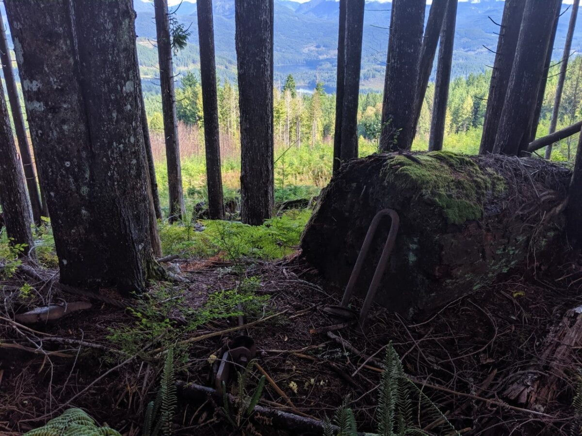 Old metal logging artifacts lie next to the trail