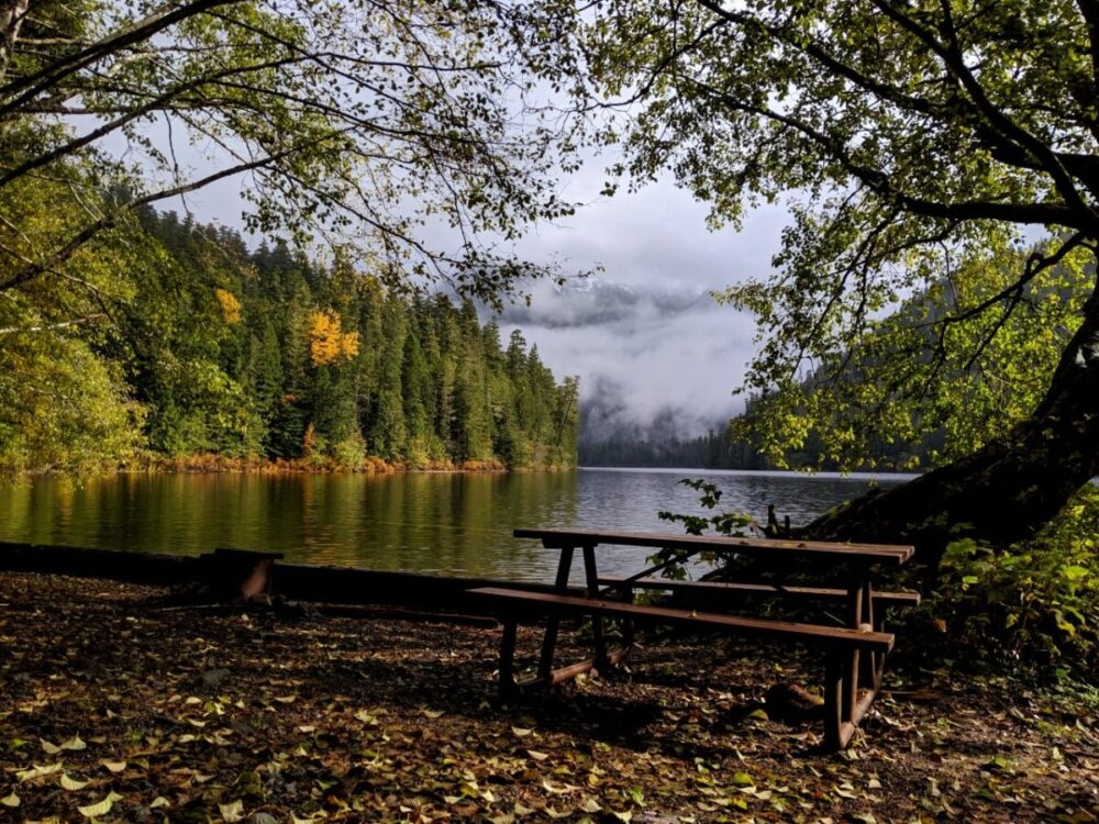 A campsite at Schoen Lake campground with picnic table looking out to lake views