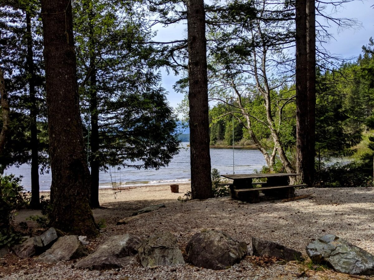 A campsite next to a lake with picnic table and fire ring on beach