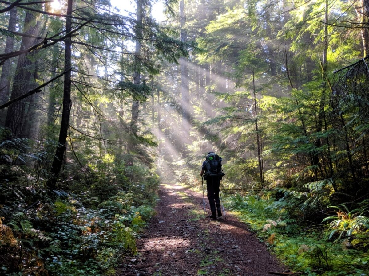 JR hiking through forest on the Sunshine Coast Trail, a 180km long backpacking route in BC