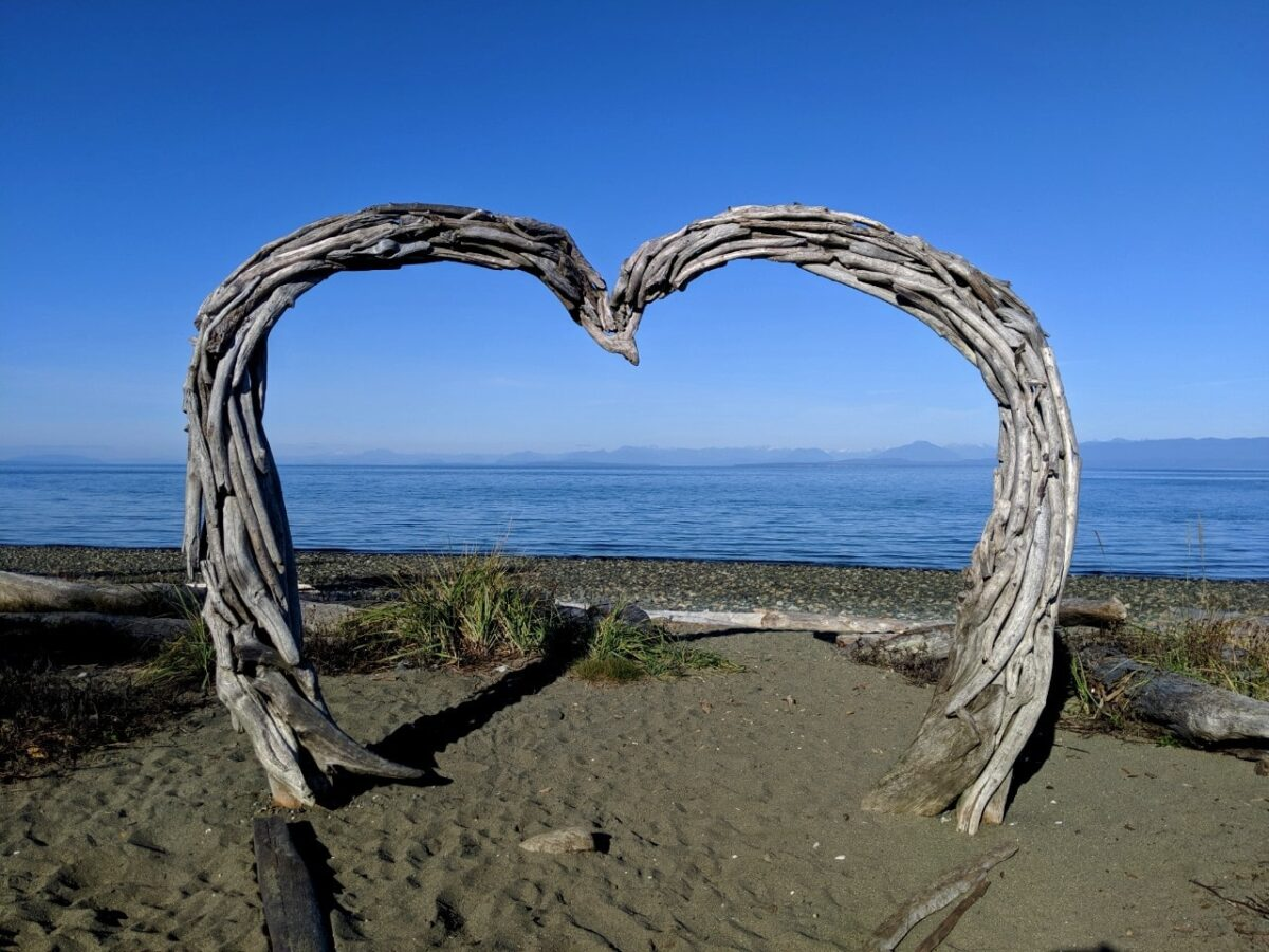 A heart shaped driftwood sculpture sits on a sandy beach with mountains in the background