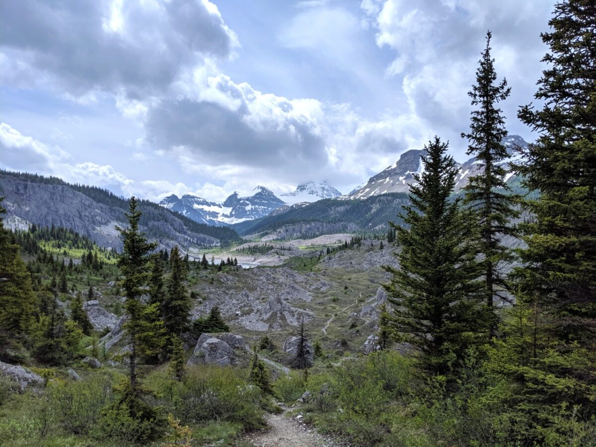 Trail leading through field of rocks in Mount Assiniboine Provincial Park