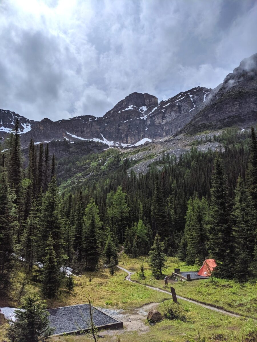 Tent pads and tent in front of forest and mountainous background in Mount Assiniboine Provincial Park