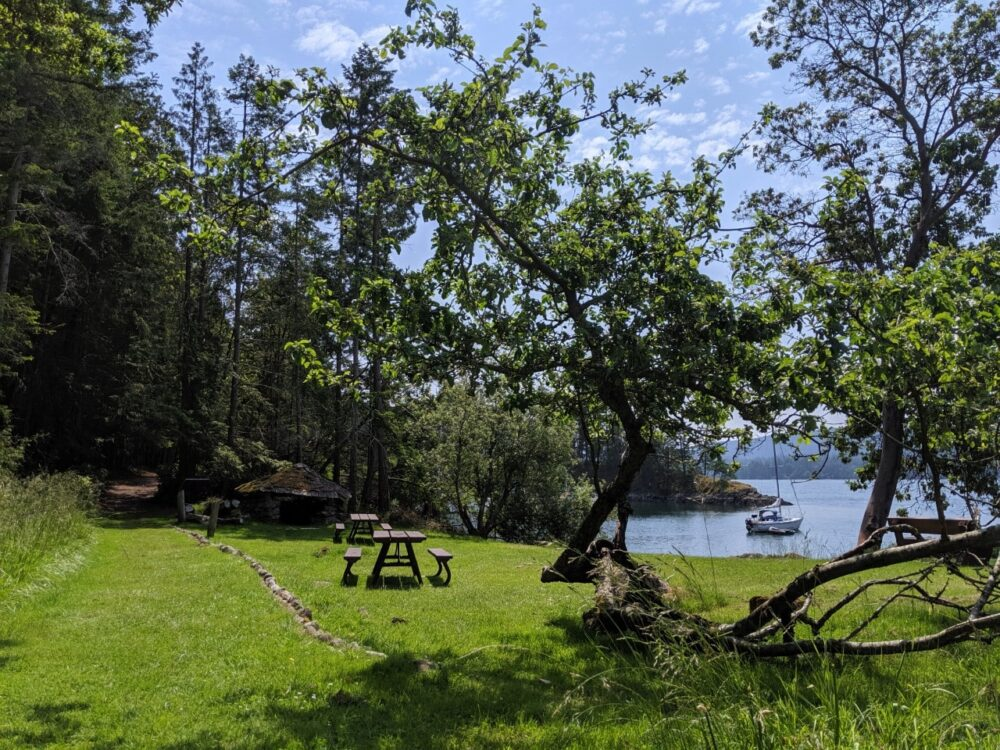 Picnic tables and shady trees in green field in Conover Cove