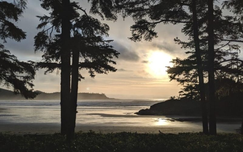 8 of the Best (Tried + Tested!) Places to Stay in Tofino, British Columbia