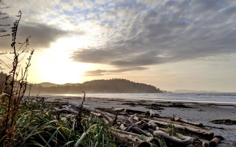 Ultimate Hiking Guide to the Cape Scott Trail, Vancouver Island