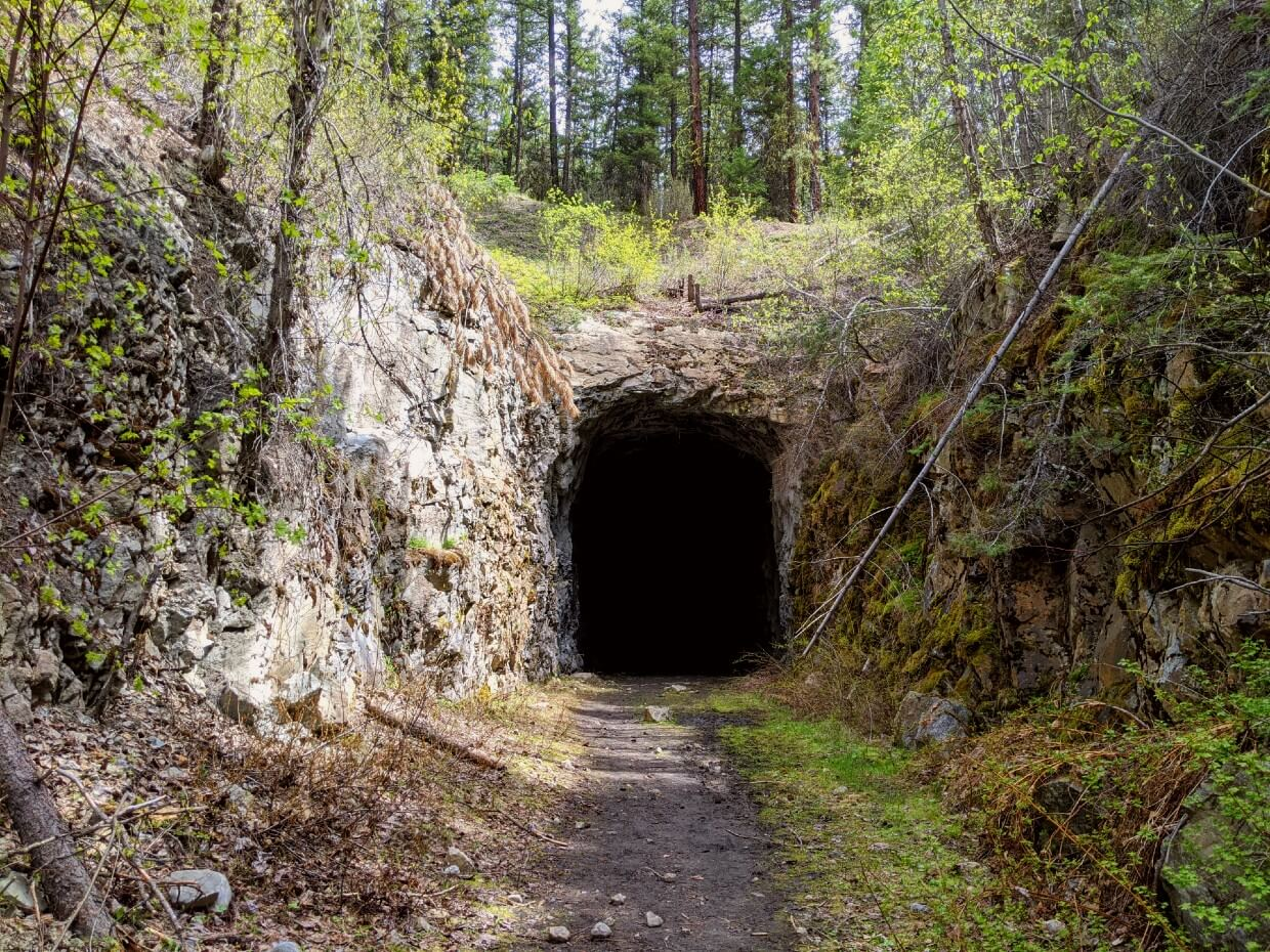 Looking along a dirt path to a pitch black tunnel in the rock, with trees and moss all around the sides