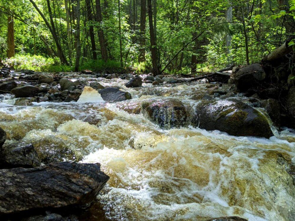 Rushing water in creek