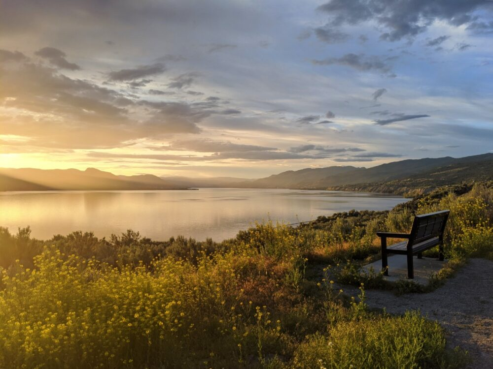Side view of bench and wildflowers on the KVR Trail, with the sun setting behind mountains on the other side of the lake