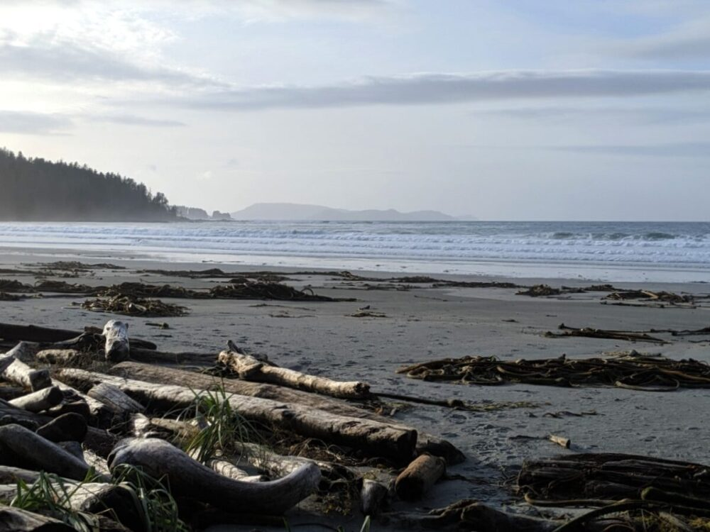 Beach scene at Nels Bight with rolling waves, driftwood, golden sand and islands in the distance