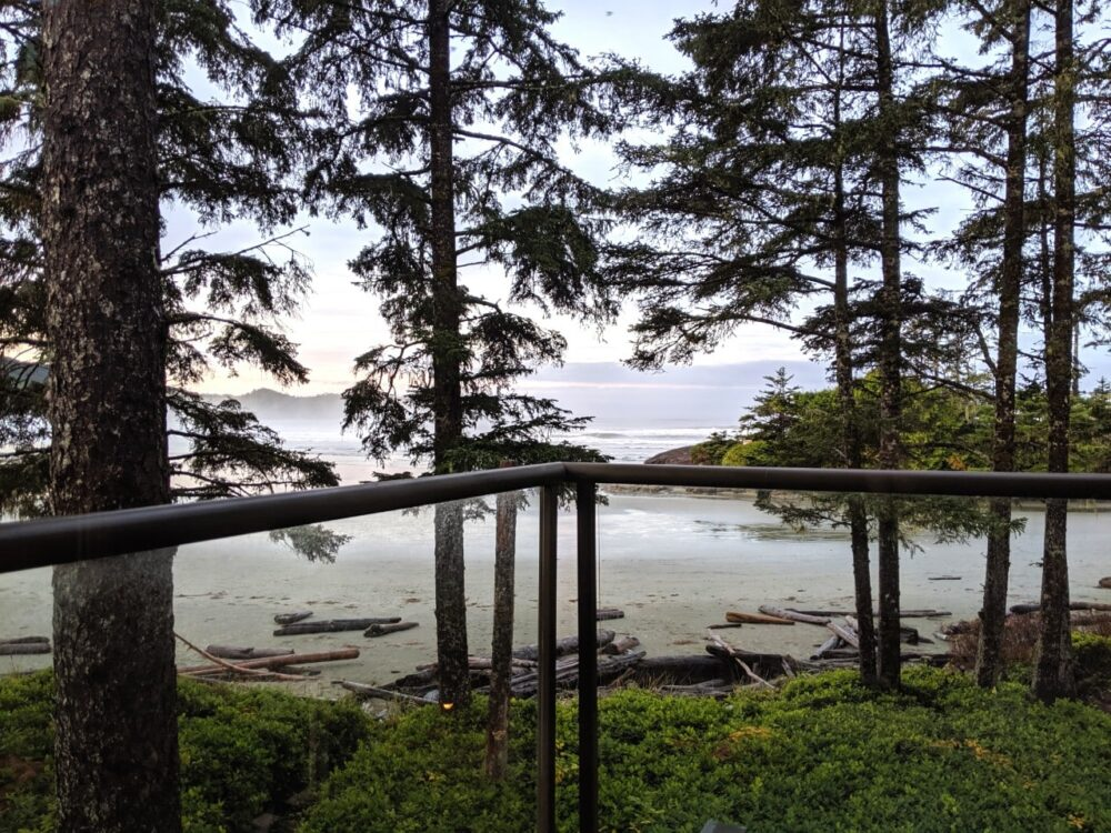 Balcony railing with views of sandy beach, trees and ocean at Pacific Sands
