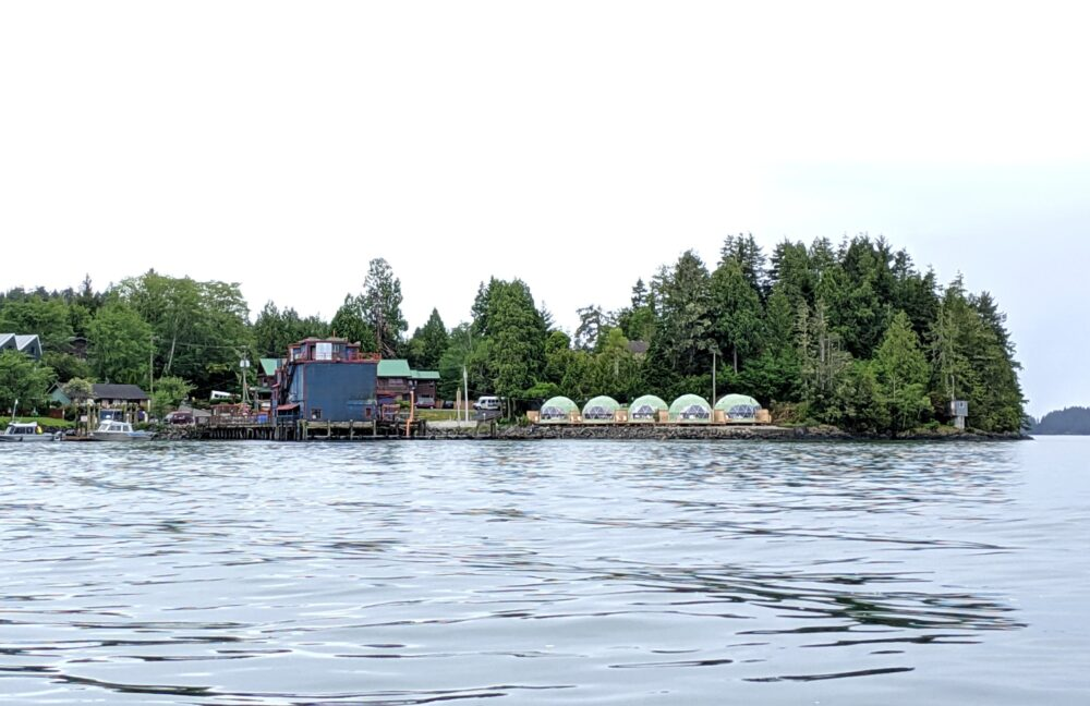 View of WILDPOD geodesic domes on shore from the water, surrounded by forest