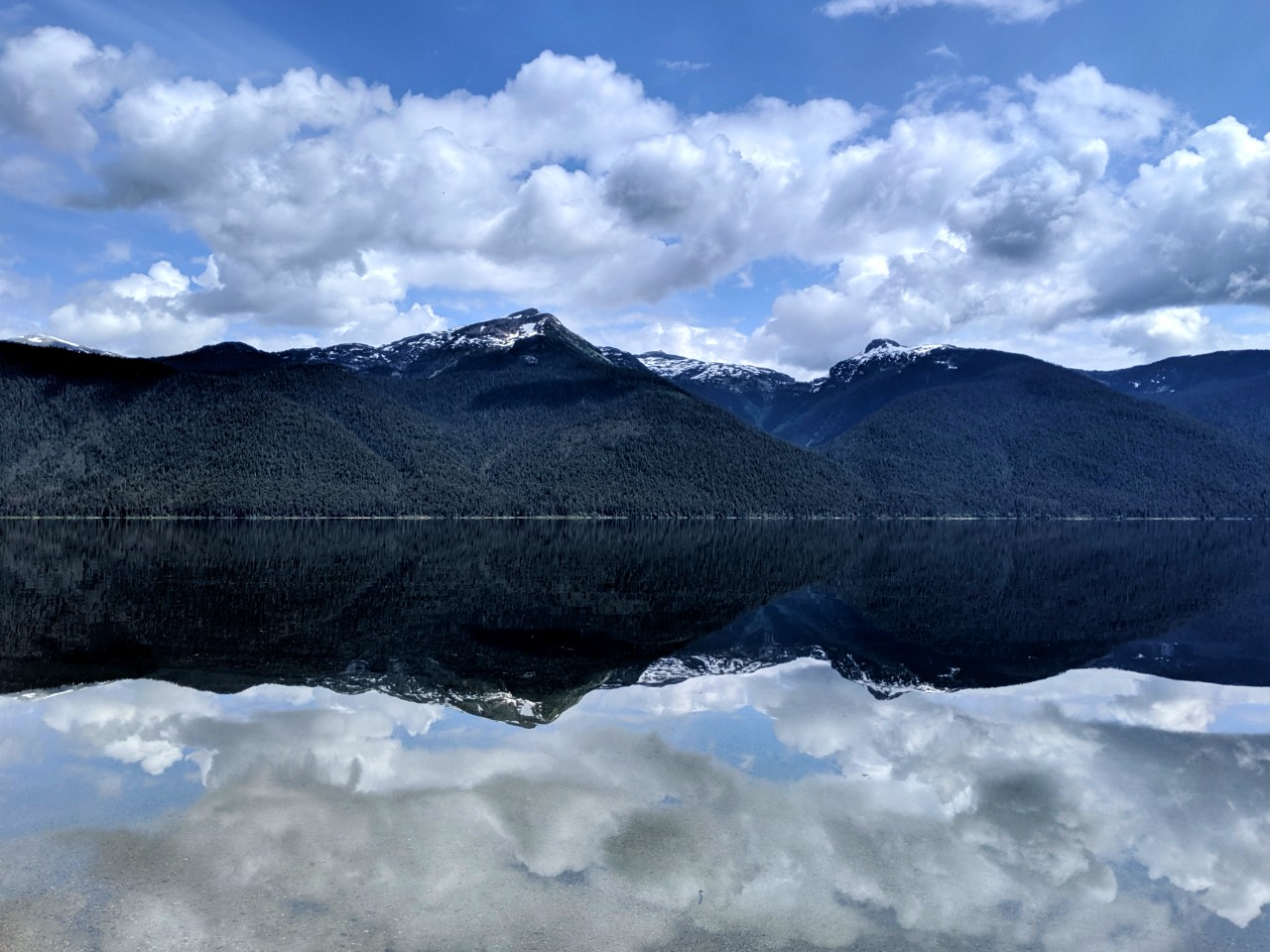 Mirror like reflections on Murtle Lake  of snow capped mountains