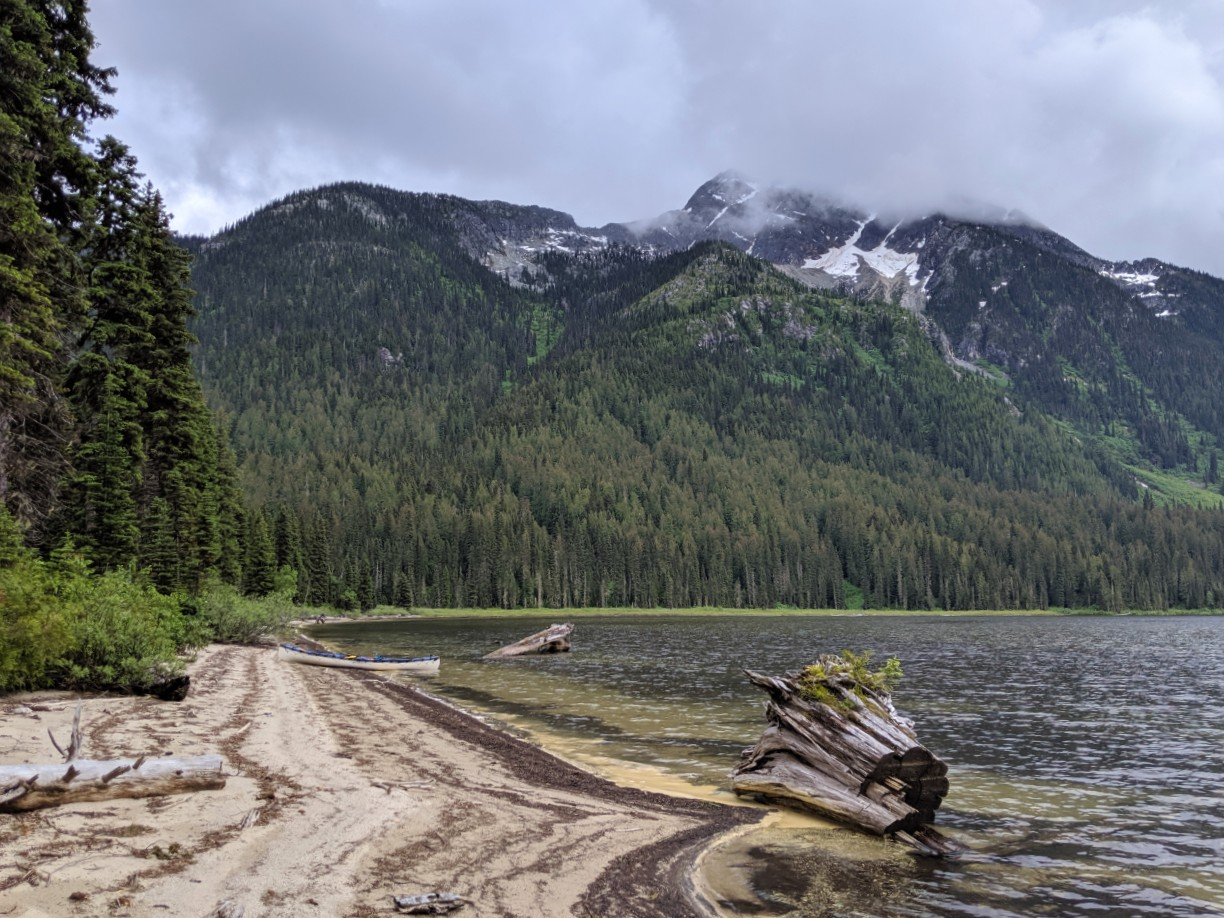 Sandy beach with driftwood and mountain backdrop on Murtle Lake, Wells Gray Provincial Park