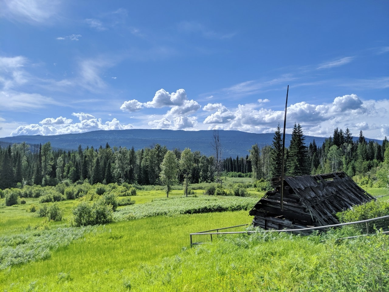 One story cabin looking out to a meadow and forest in Wells Gray Provincial Park