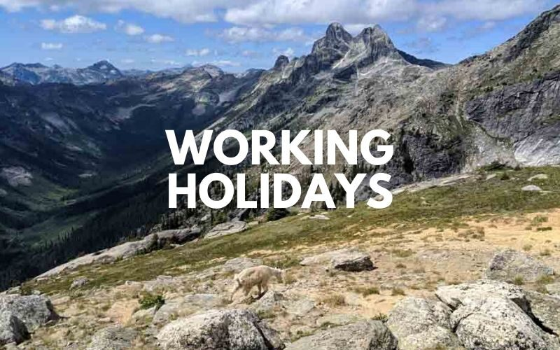 working holidays
