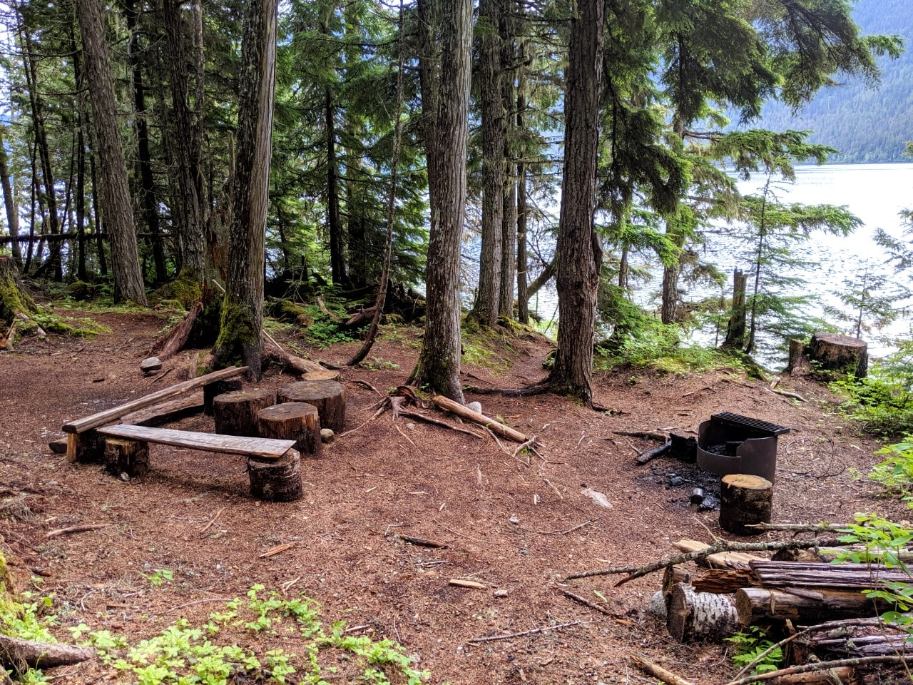 Cleared area at edge of forest with firepit and log tables and chairs