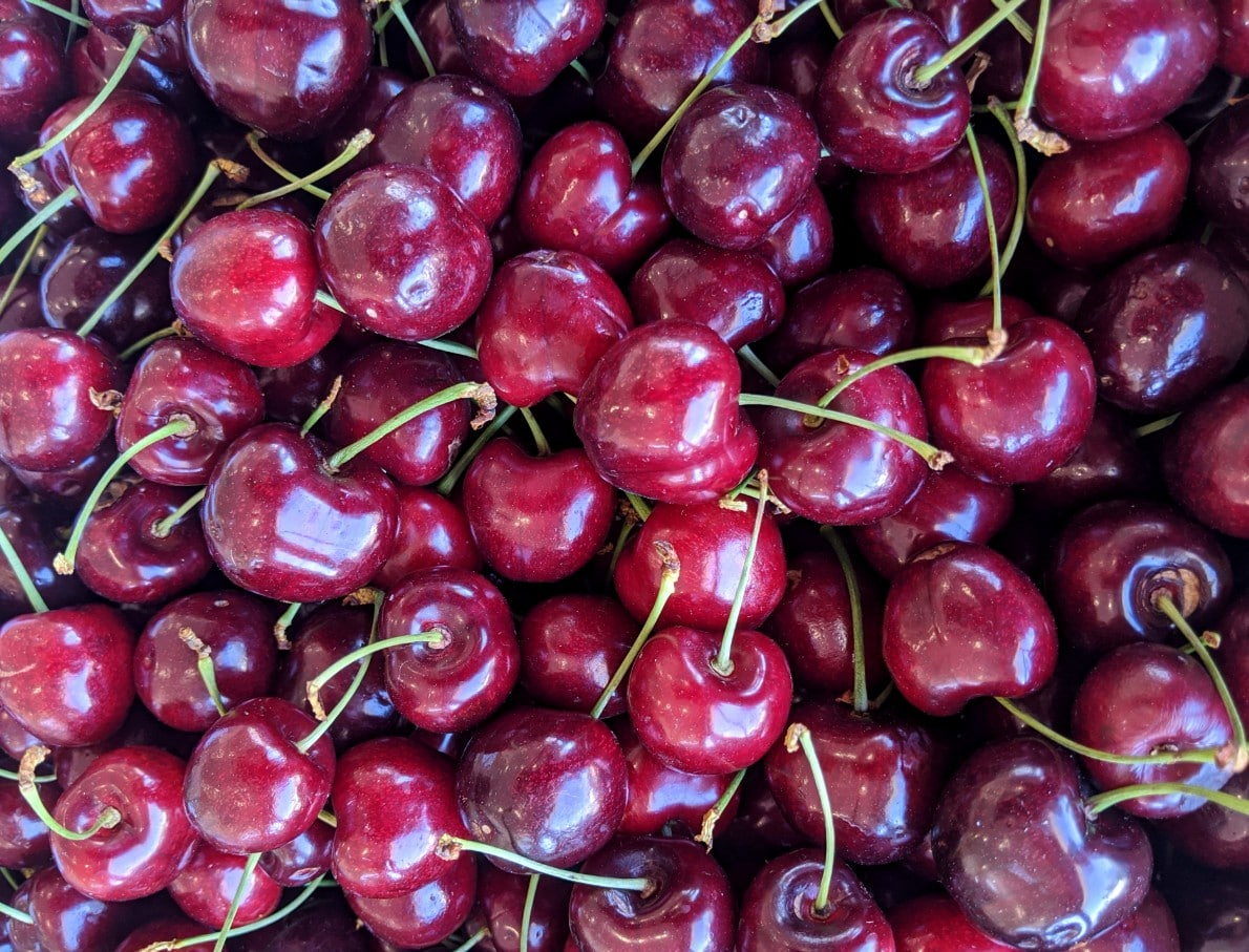 Close up of Osoyoos cherries