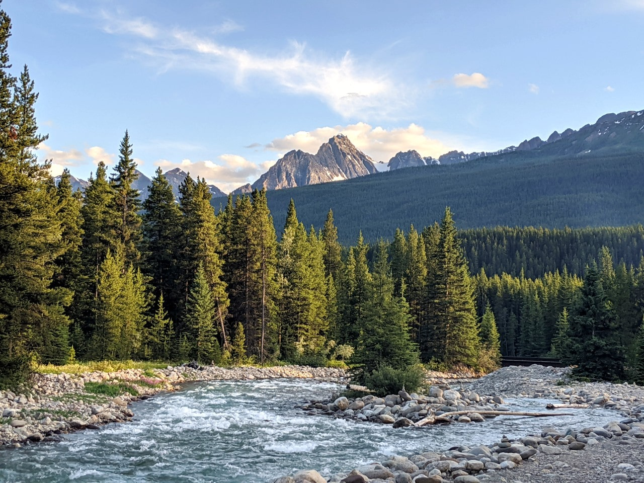 Baker Creek rushes through forest with backdrop of mountains