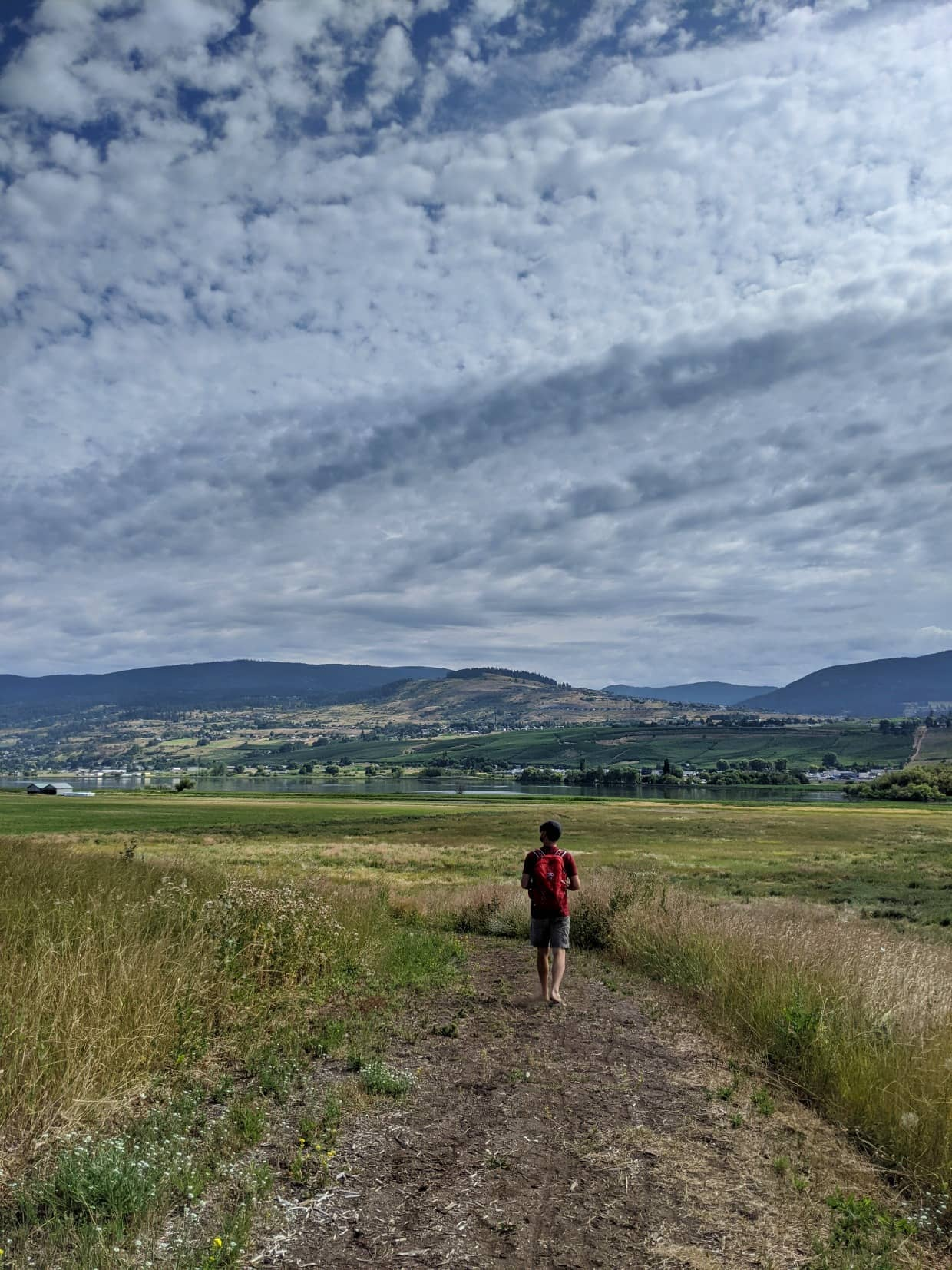 JR walking away from camera on dirt path with Swan Lake, hills and vineyards in background