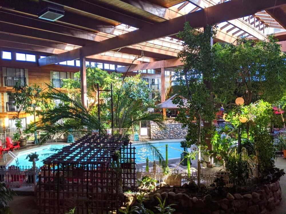 Interior hotel view of rainforest atrium with swimming pool and wooden beam ceiling