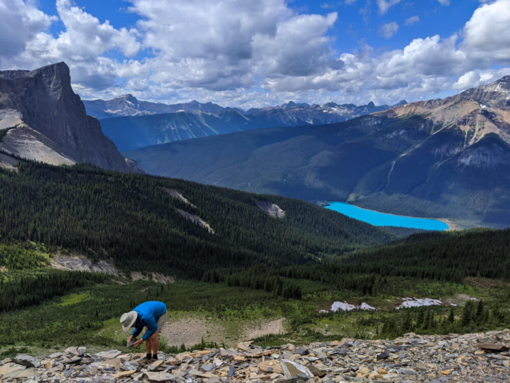 JR looking for Burgess Shale fossils at Walcott Quarry with Emerald Lake an surrounding mountains in the background