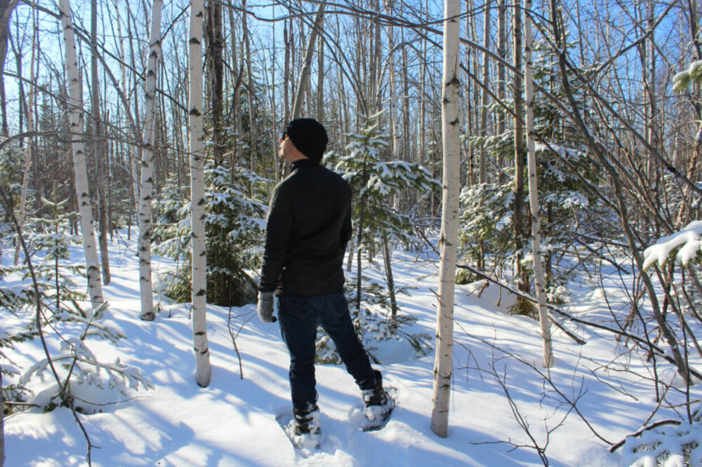 JR standing in New Brunswick forest looking to left wearing black jacket, jeans and snowshoes