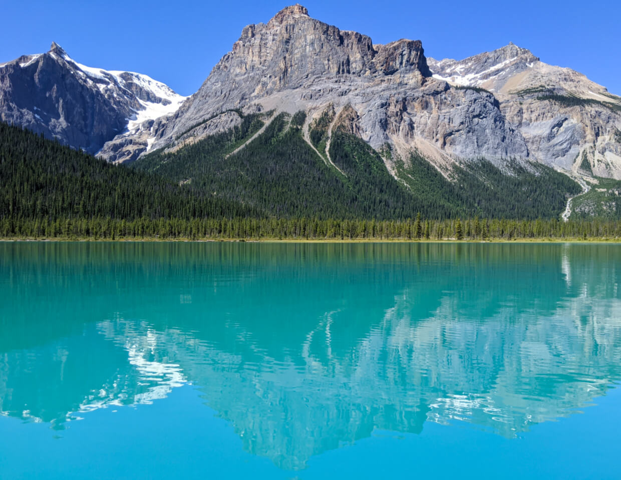 On water view of Emerald Lake, surrounded by snow capped mountains and bordered by forest. The lake colour is bright blue