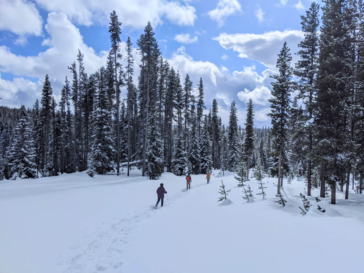 Three people snowshoeing through snow covered landscape in British Columbia