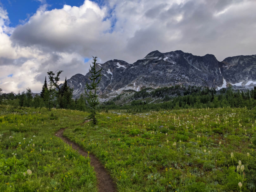 Dirt trail leads through meadow with mountain range in background