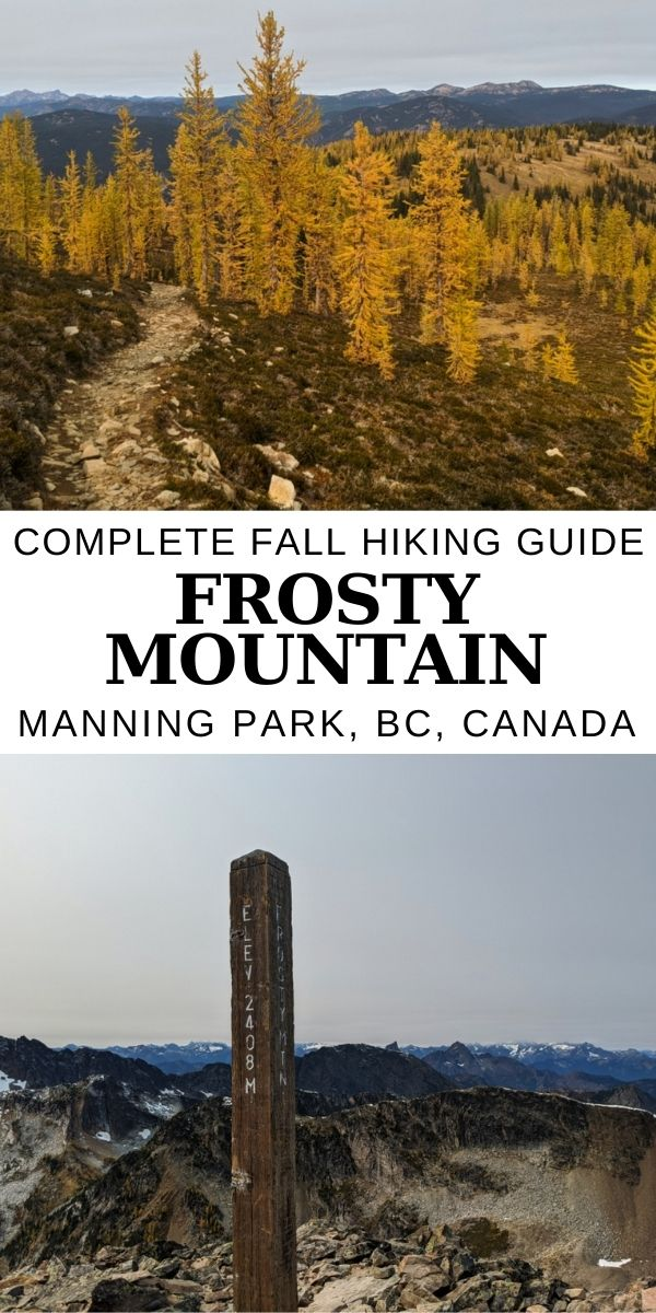 Every autumn, E.C. Manning Provincial Park plays host to a little colour changing magic. This is all thanks to the Frosty Mountain larches, which turn a gorgeous golden yellow before the needles drop. Here's everything you need to know to see this amazing display! offtracktravel.ca
