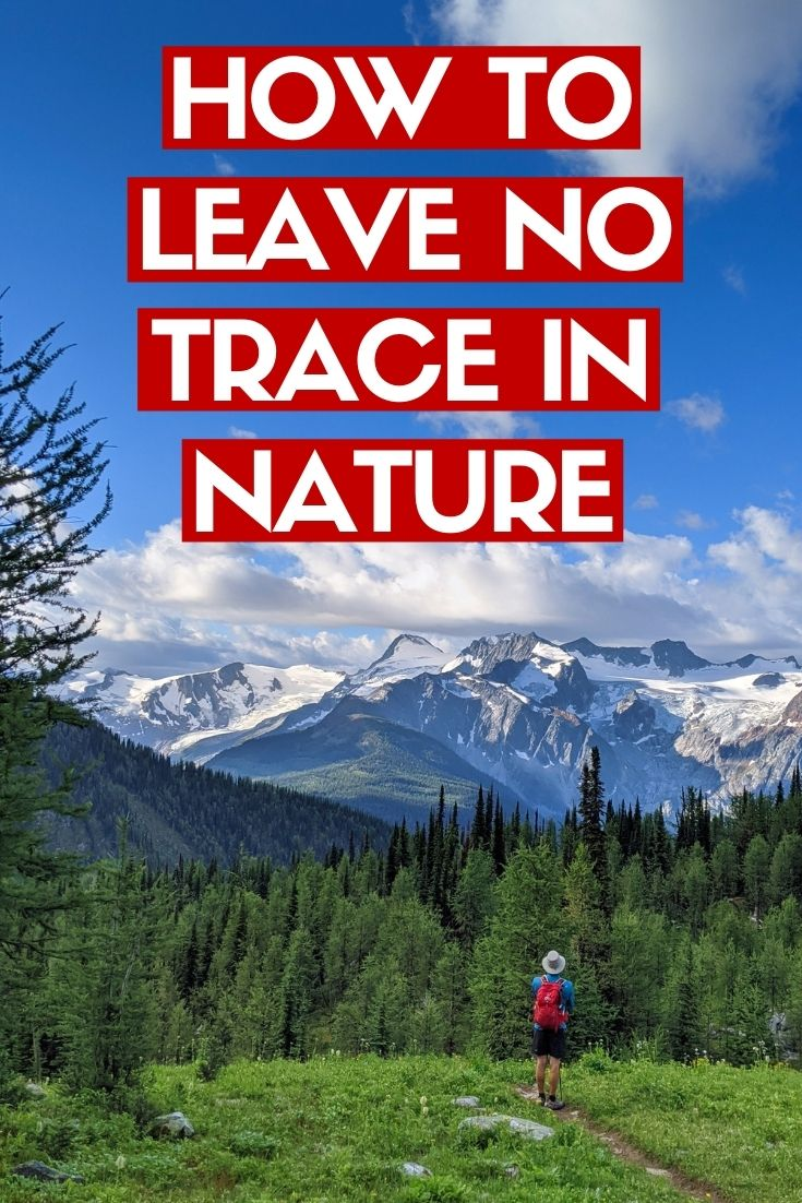 Leave No Trace is all about minimising our impact on nature, to ensure that the wilderness remains wild. Click here to discover more about Leave No Trace and how you can protect nature for wildlife and future generations!