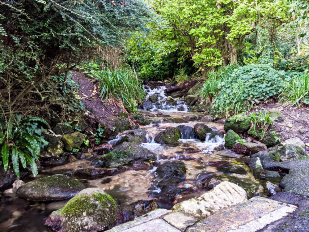 Cascading waterfall surrounded by lush plants in the Bonchurch Landslip area on the Isle of Wight Coastal Path