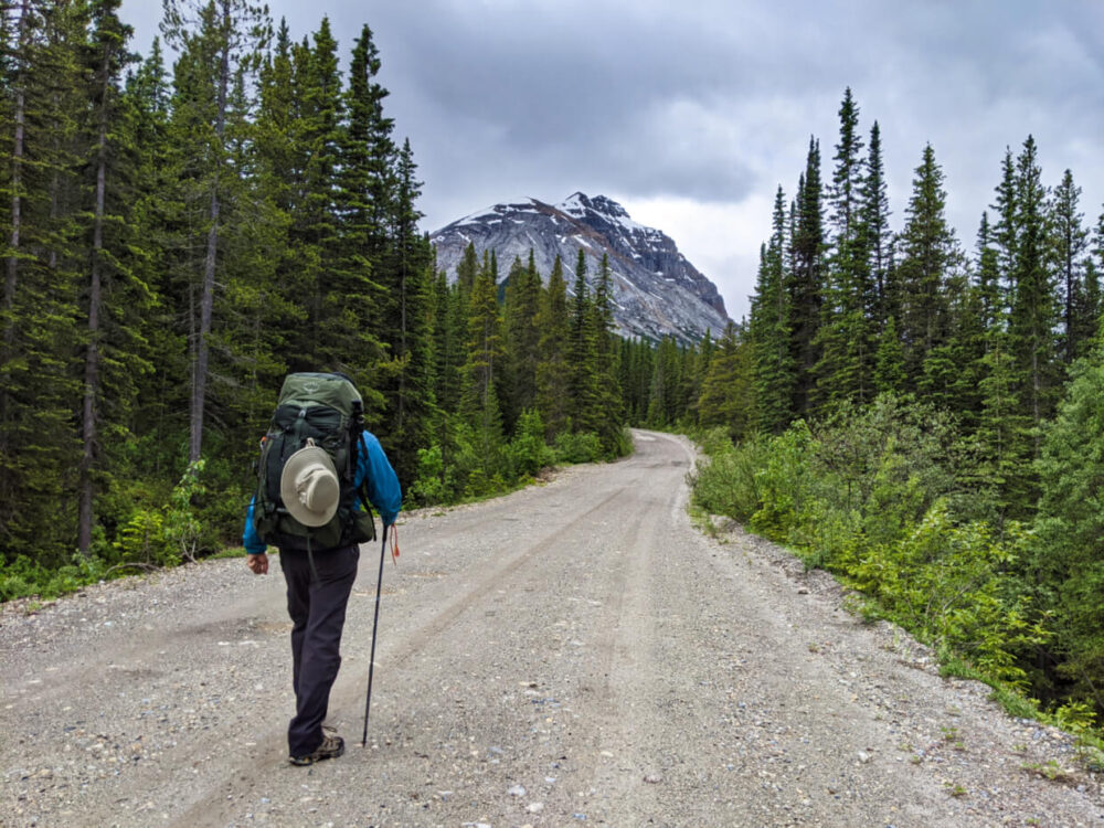 JR hiking with a backpack on the wide gravel Lake O'Hara access road, which is lined by evergreen trees and backdropped by mountain views