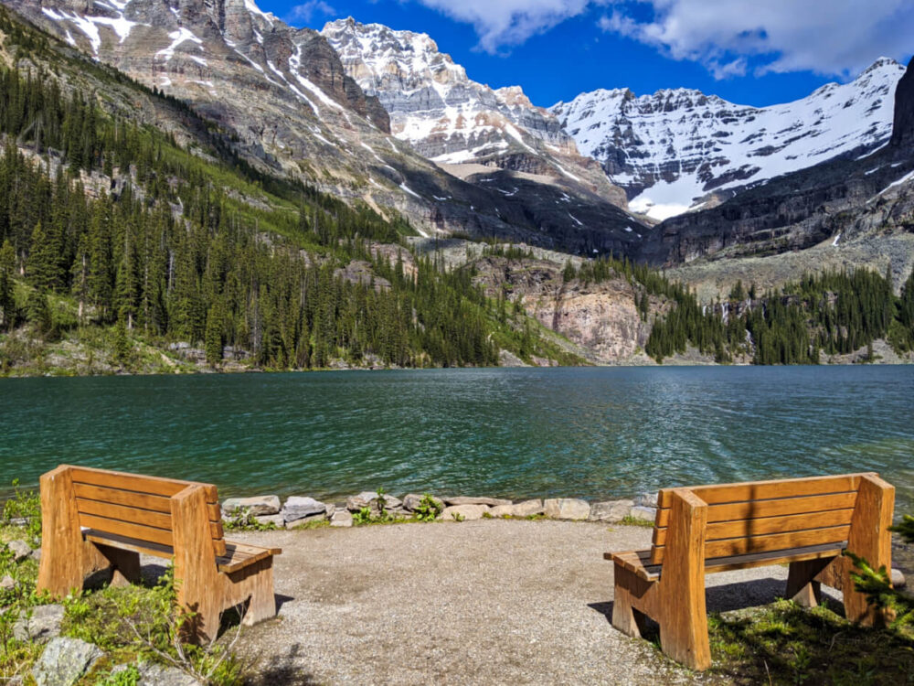 Two wooden benches set in front of Lake O'Hara with views of calm lake and mountainous backdrop
