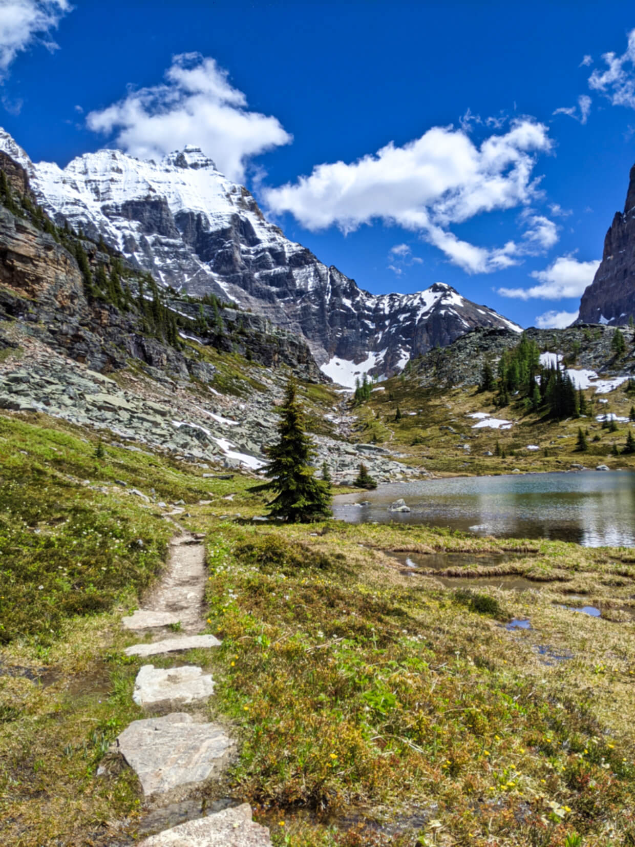Vertical image showing hiking path leading towards camera, traversing alpine meadow and rocky areas, passing by a calm lake and backdropped by snowy mountains