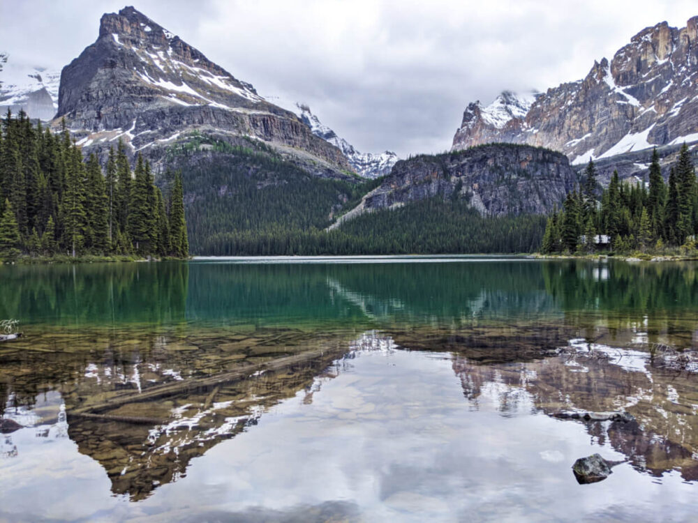 View of Lake O'Hara from shore, surrounded by rugged mountains with reflections on calm water surface